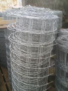 Horse Wire.jpg1