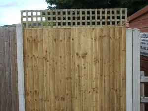 Solid-flat-top-Picket-panel-With-2-inch-trellis-on-top-0031-300x225
