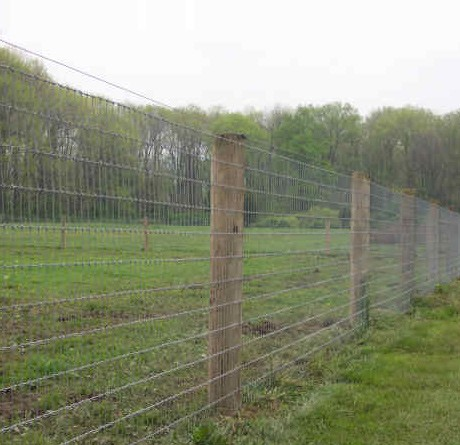 Attirant Best Types Of Fencing For Gardens And Farms